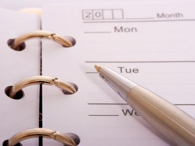 website timeline schedule